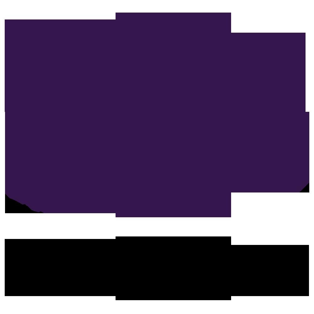 Scoutside-Logo